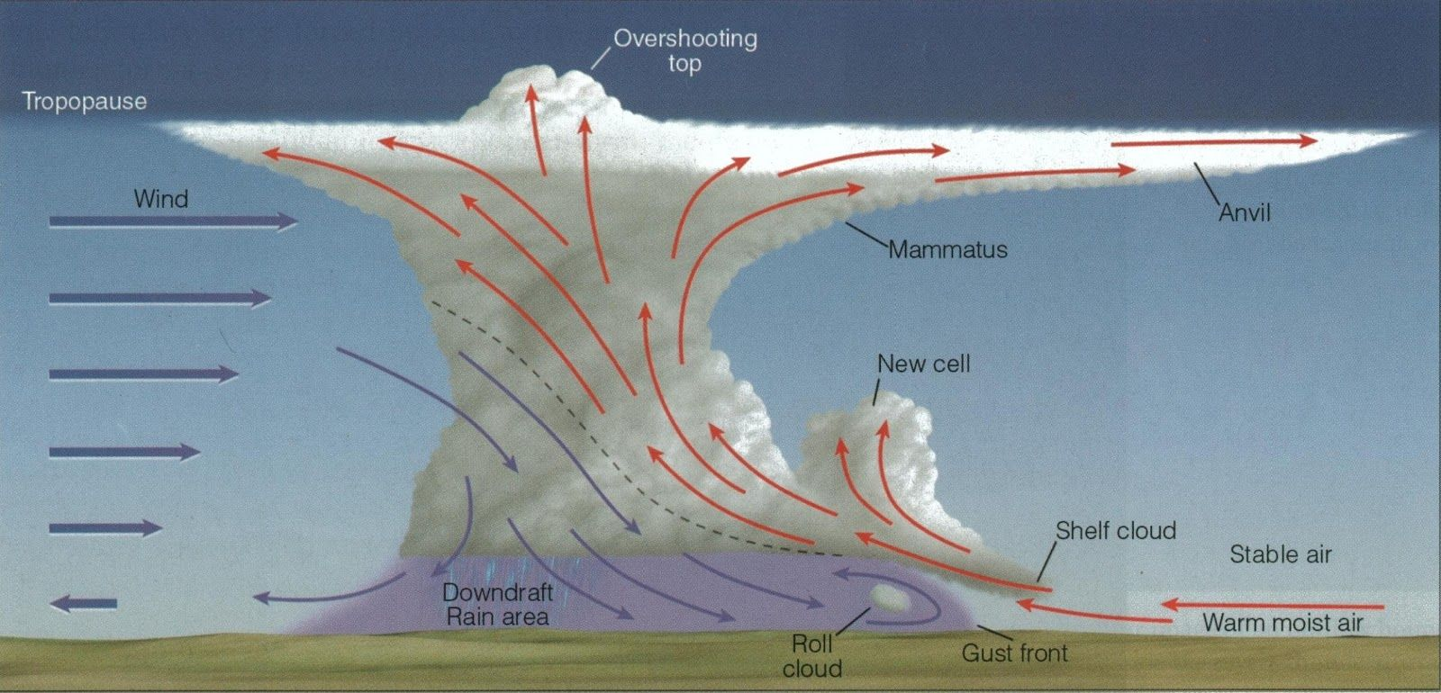 Calm before the storm - etymology, origin and meaning